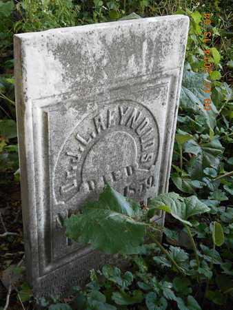 REYNOLDS, DR. J. L. - Hillsdale County, Michigan | DR. J. L. REYNOLDS - Michigan Gravestone Photos