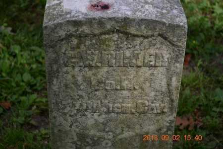 RIMER, G.W. - Hillsdale County, Michigan | G.W. RIMER - Michigan Gravestone Photos