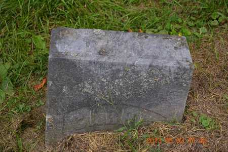 COOK ROBERTS, CARRIE - Hillsdale County, Michigan | CARRIE COOK ROBERTS - Michigan Gravestone Photos