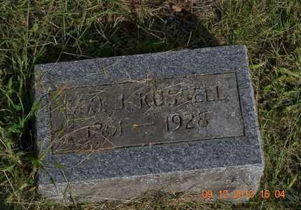 RUSSELL, GEORGE J. - Hillsdale County, Michigan | GEORGE J. RUSSELL - Michigan Gravestone Photos