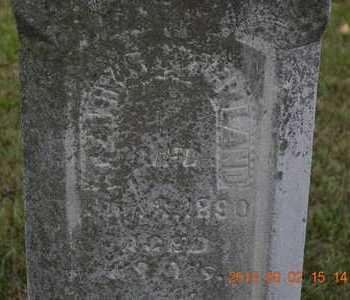 STRICKLAND, TERRY - Hillsdale County, Michigan | TERRY STRICKLAND - Michigan Gravestone Photos