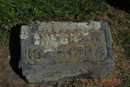 SYLVESTER, CHESTER - Hillsdale County, Michigan | CHESTER SYLVESTER - Michigan Gravestone Photos
