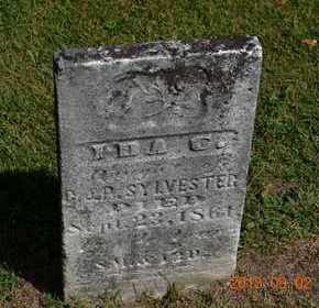 SYLVESTER, IDA C. - Hillsdale County, Michigan | IDA C. SYLVESTER - Michigan Gravestone Photos