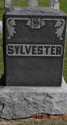 SYLVESTER, LOT MARKER - Hillsdale County, Michigan | LOT MARKER SYLVESTER - Michigan Gravestone Photos