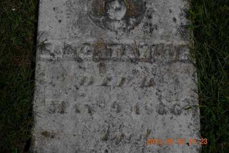 TAYLOR, GEORGE C. - Hillsdale County, Michigan   GEORGE C. TAYLOR - Michigan Gravestone Photos