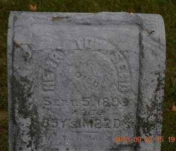 TOWNSEND, HENRY - Hillsdale County, Michigan | HENRY TOWNSEND - Michigan Gravestone Photos