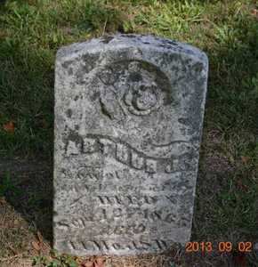WARWICK, ARTHUR J. - Hillsdale County, Michigan | ARTHUR J. WARWICK - Michigan Gravestone Photos