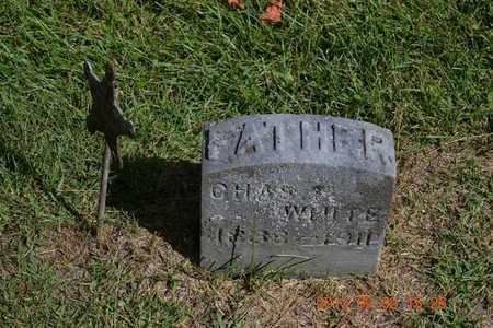 WHITE, CHARLES P. - Hillsdale County, Michigan | CHARLES P. WHITE - Michigan Gravestone Photos