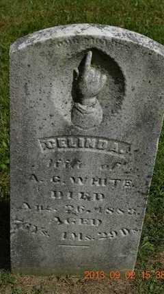 WHITE, CELINDA - Hillsdale County, Michigan   CELINDA WHITE - Michigan Gravestone Photos