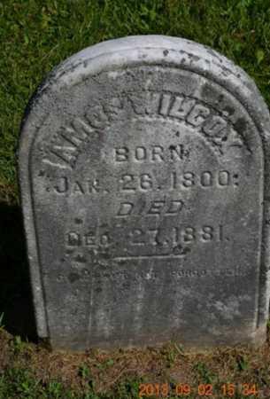 WILCOX, JAMES - Hillsdale County, Michigan | JAMES WILCOX - Michigan Gravestone Photos