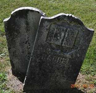 WILCOX, RACHEL - Hillsdale County, Michigan | RACHEL WILCOX - Michigan Gravestone Photos