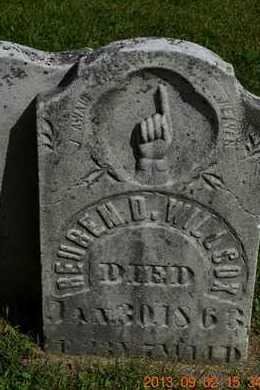 WILLCOX, REUBEN D. - Hillsdale County, Michigan | REUBEN D. WILLCOX - Michigan Gravestone Photos