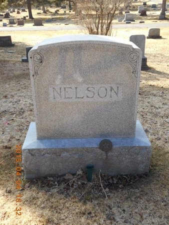 NELSON, FAMILY - Iron County, Michigan   FAMILY NELSON - Michigan Gravestone Photos