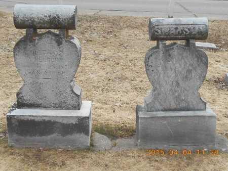 SWANSON, UNKNOWN - Iron County, Michigan | UNKNOWN SWANSON - Michigan Gravestone Photos