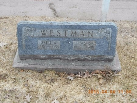 WESTMAN, CHARLES - Iron County, Michigan | CHARLES WESTMAN - Michigan Gravestone Photos
