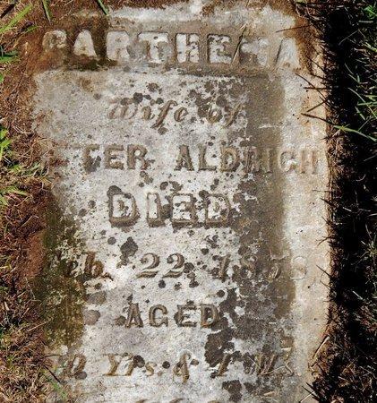 ALDRICH, PARTHENA - Kalamazoo County, Michigan | PARTHENA ALDRICH - Michigan Gravestone Photos