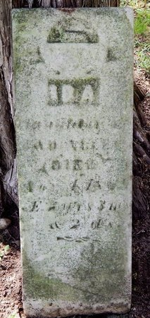 ALLEN, IDA - Kalamazoo County, Michigan | IDA ALLEN - Michigan Gravestone Photos