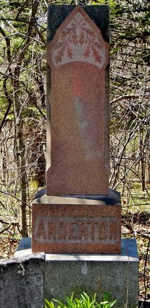 ANDERTON, FAMILY MARKER - Kalamazoo County, Michigan | FAMILY MARKER ANDERTON - Michigan Gravestone Photos