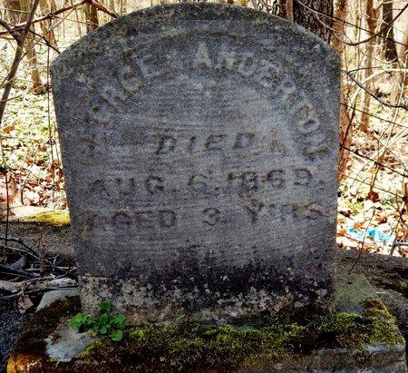 ANDERTON, GEORGE - Kalamazoo County, Michigan | GEORGE ANDERTON - Michigan Gravestone Photos