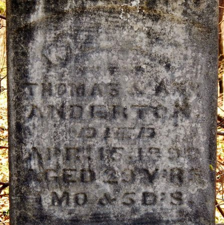 ANDERTON, WILLIAM - Kalamazoo County, Michigan | WILLIAM ANDERTON - Michigan Gravestone Photos