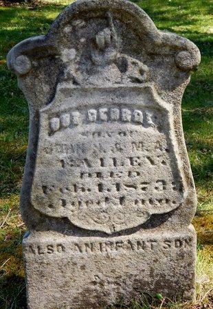 BAILEY, INFANT SON - Kalamazoo County, Michigan | INFANT SON BAILEY - Michigan Gravestone Photos