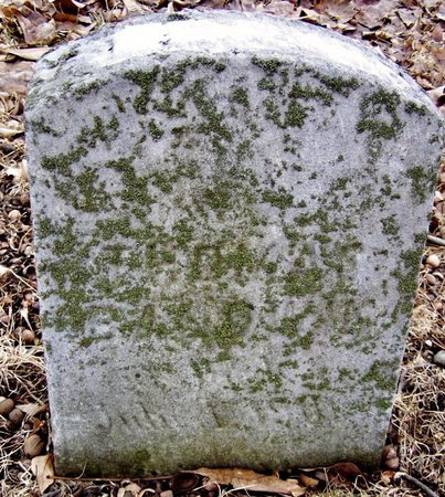 BALDWIN, ELEANOR - Kalamazoo County, Michigan | ELEANOR BALDWIN - Michigan Gravestone Photos