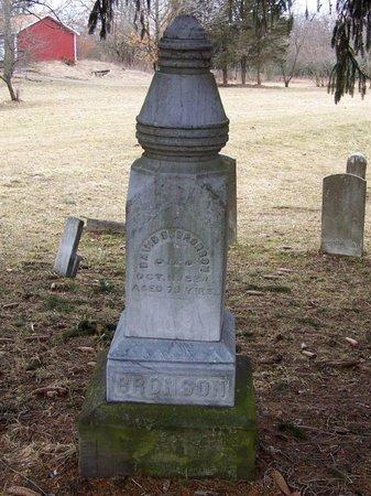BRONSON, DAVID - Kalamazoo County, Michigan | DAVID BRONSON - Michigan Gravestone Photos
