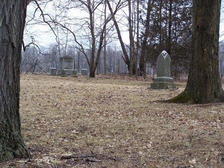 CEMETERY, TOAD HOLLOW - Kalamazoo County, Michigan   TOAD HOLLOW CEMETERY - Michigan Gravestone Photos
