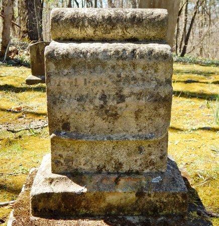 COOK, CASSIUS G. - Kalamazoo County, Michigan | CASSIUS G. COOK - Michigan Gravestone Photos