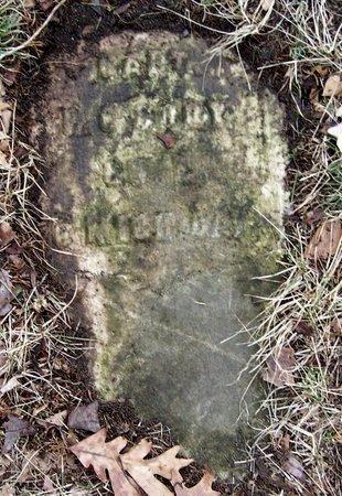 CORY, PHILIP GRAY - Kalamazoo County, Michigan | PHILIP GRAY CORY - Michigan Gravestone Photos