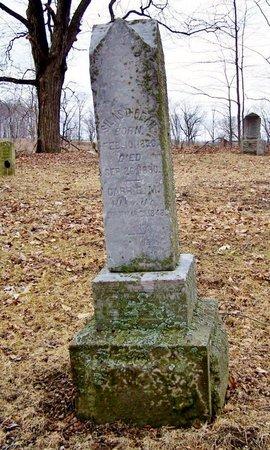 DEAN, CARRIE - Kalamazoo County, Michigan   CARRIE DEAN - Michigan Gravestone Photos
