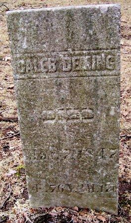 DEMING, CALEB - Kalamazoo County, Michigan | CALEB DEMING - Michigan Gravestone Photos