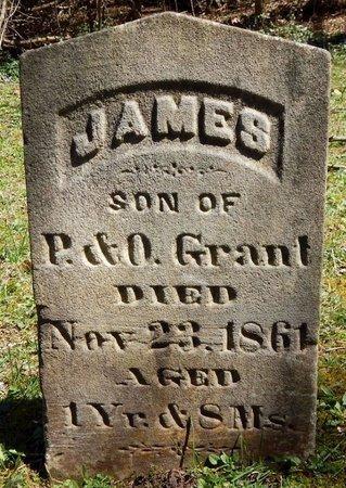 GRANT, JAMES - Kalamazoo County, Michigan | JAMES GRANT - Michigan Gravestone Photos