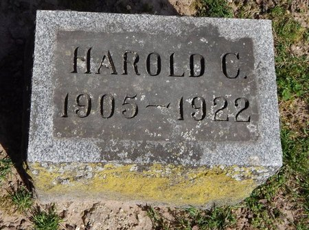 GREER, HAROLD C. - Kalamazoo County, Michigan   HAROLD C. GREER - Michigan Gravestone Photos