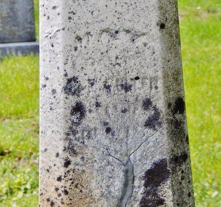 GREER, MAY - Kalamazoo County, Michigan | MAY GREER - Michigan Gravestone Photos