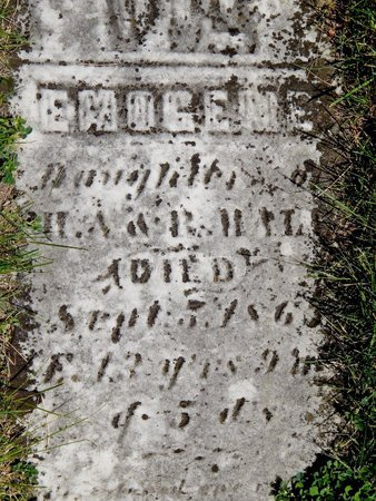 HALL, EMOGENE - Kalamazoo County, Michigan   EMOGENE HALL - Michigan Gravestone Photos