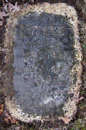 HARRIS, SALLY - Kalamazoo County, Michigan | SALLY HARRIS - Michigan Gravestone Photos