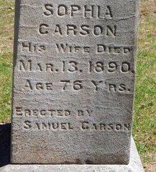 CARSON HISER, SOPHIA - Kalamazoo County, Michigan | SOPHIA CARSON HISER - Michigan Gravestone Photos