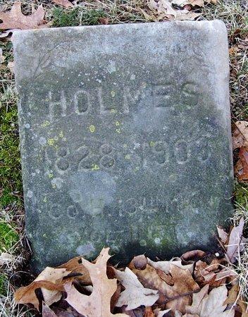 HOLMES, ALVIN - Kalamazoo County, Michigan | ALVIN HOLMES - Michigan Gravestone Photos