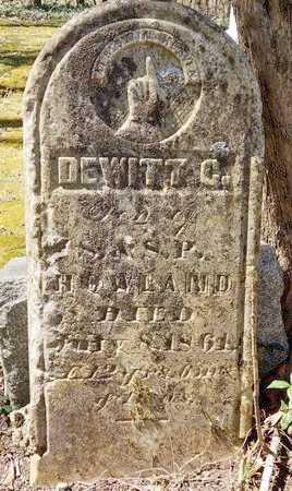 HOWLAND, DEWITT C. - Kalamazoo County, Michigan | DEWITT C. HOWLAND - Michigan Gravestone Photos
