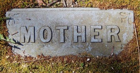 HOWLAND, SARAH B. - Kalamazoo County, Michigan | SARAH B. HOWLAND - Michigan Gravestone Photos