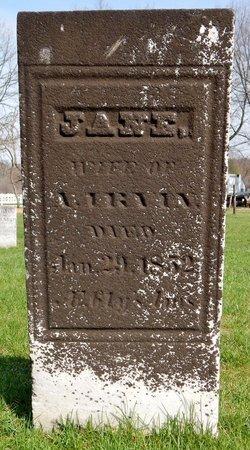 IRVIN, JANE - Kalamazoo County, Michigan | JANE IRVIN - Michigan Gravestone Photos
