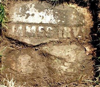 IRVIN, JAMES - Kalamazoo County, Michigan   JAMES IRVIN - Michigan Gravestone Photos