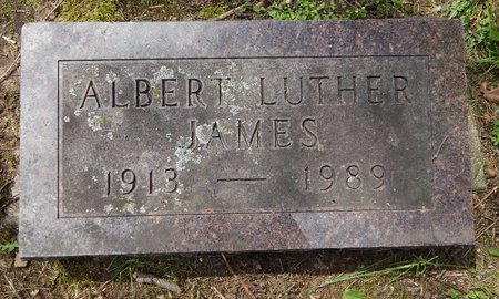 JAMES, ALBERT L. - Kalamazoo County, Michigan | ALBERT L. JAMES - Michigan Gravestone Photos