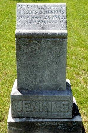 JENKINS, CORA L. - Kalamazoo County, Michigan | CORA L. JENKINS - Michigan Gravestone Photos