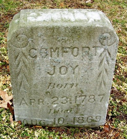 JOY, COMFORT - Kalamazoo County, Michigan | COMFORT JOY - Michigan Gravestone Photos