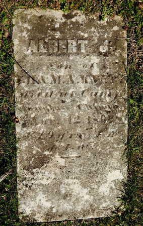 KNAPP, ALBERT J. - Kalamazoo County, Michigan   ALBERT J. KNAPP - Michigan Gravestone Photos