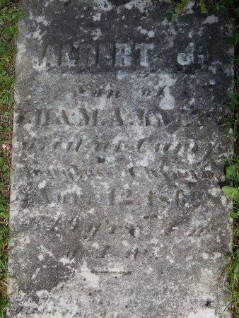KNAPP, ALBERT J. - Kalamazoo County, Michigan | ALBERT J. KNAPP - Michigan Gravestone Photos