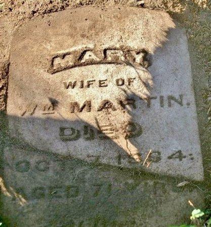 MARTIN, MARY - Kalamazoo County, Michigan | MARY MARTIN - Michigan Gravestone Photos