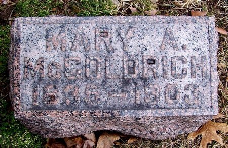 MCGOLDRICH, MARY - Kalamazoo County, Michigan | MARY MCGOLDRICH - Michigan Gravestone Photos